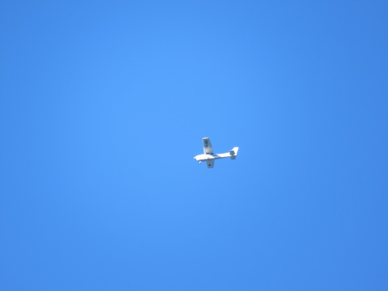 180321_odd ball_plane