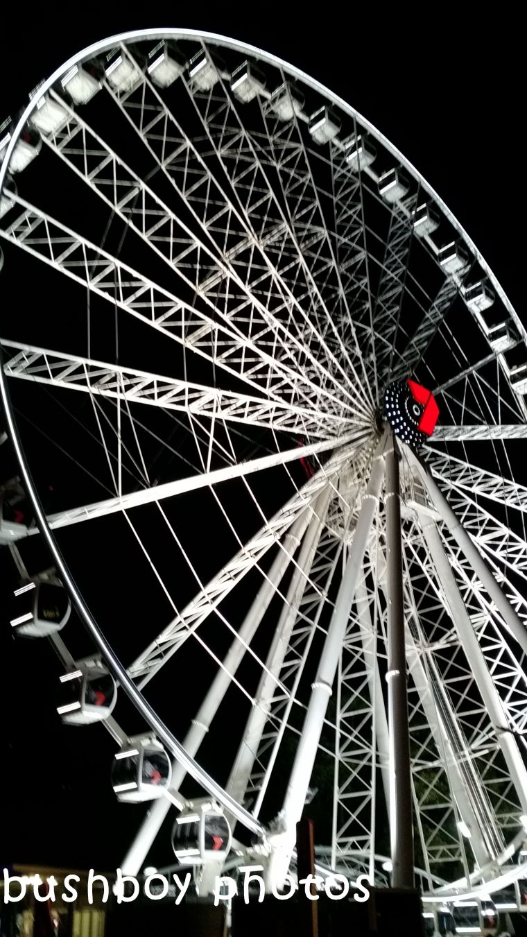 180331_squae march_ferris wheel_brisbane_whole