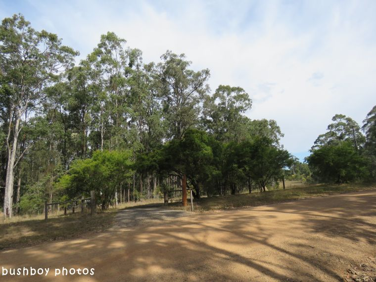 180424_blog challenge_which way_home gate