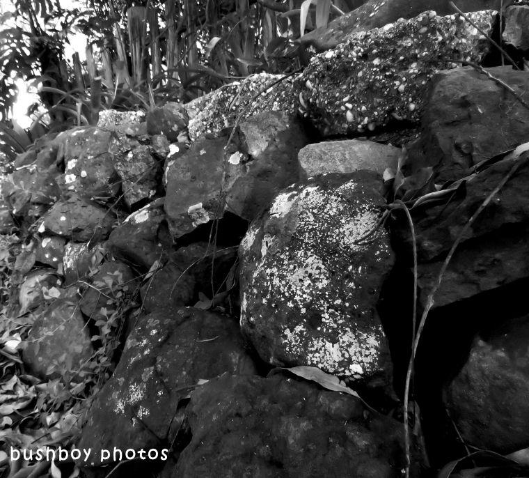 shape_texture_rock wall_named_april 2018