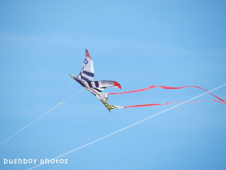 180504_blog challenge_up or down_kite1