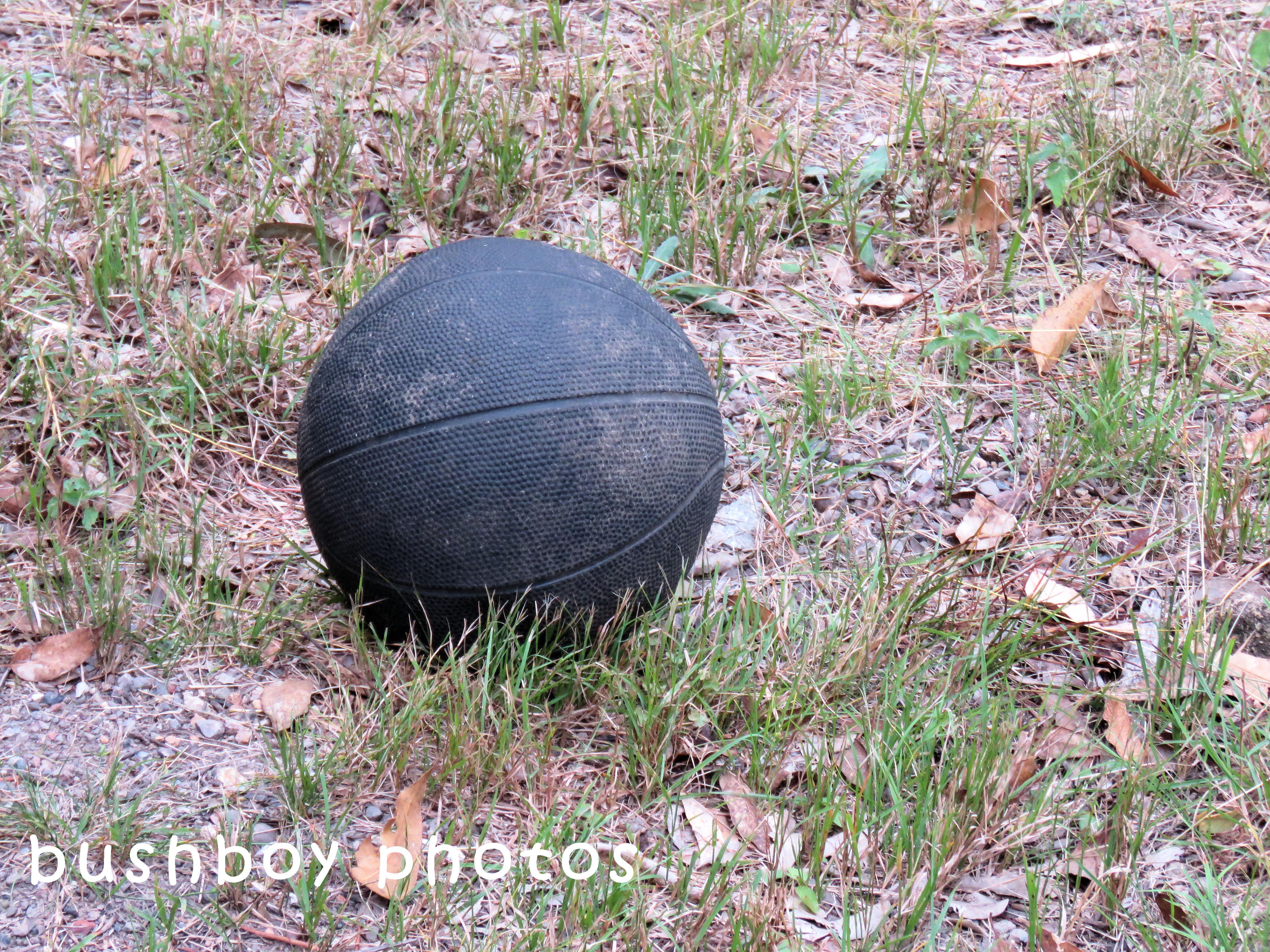 180504_odd ball_basketball