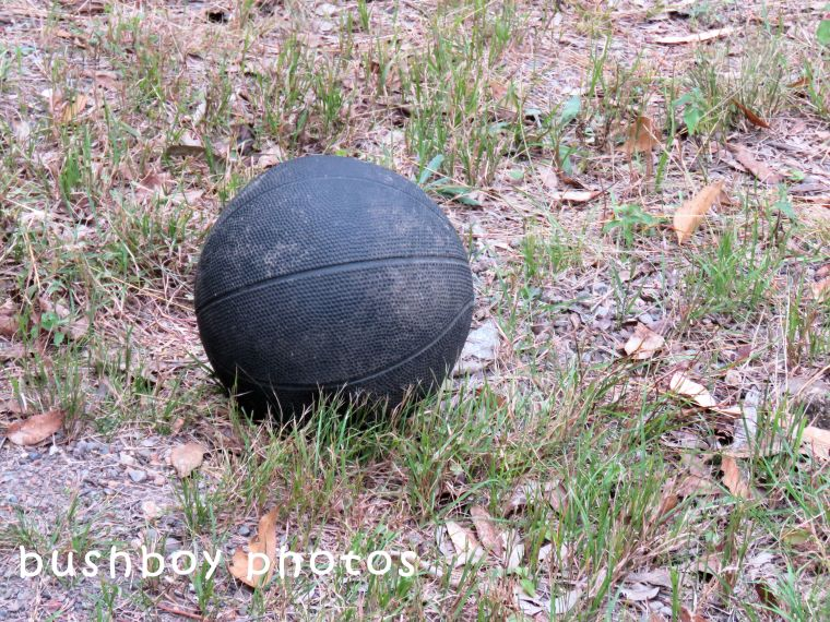 180504_odd ball_basketball