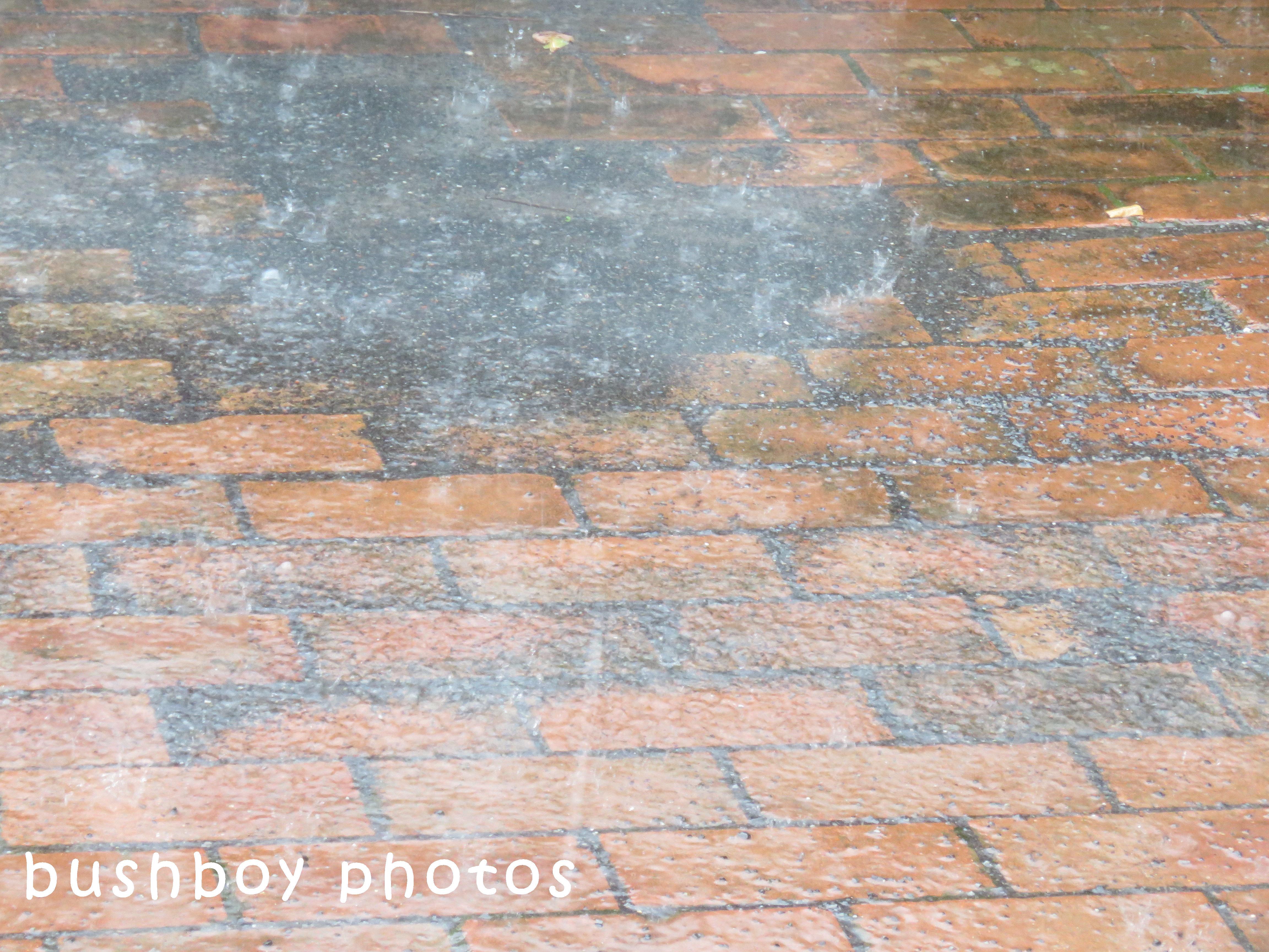 180520_blog challenge_saturation_rain path