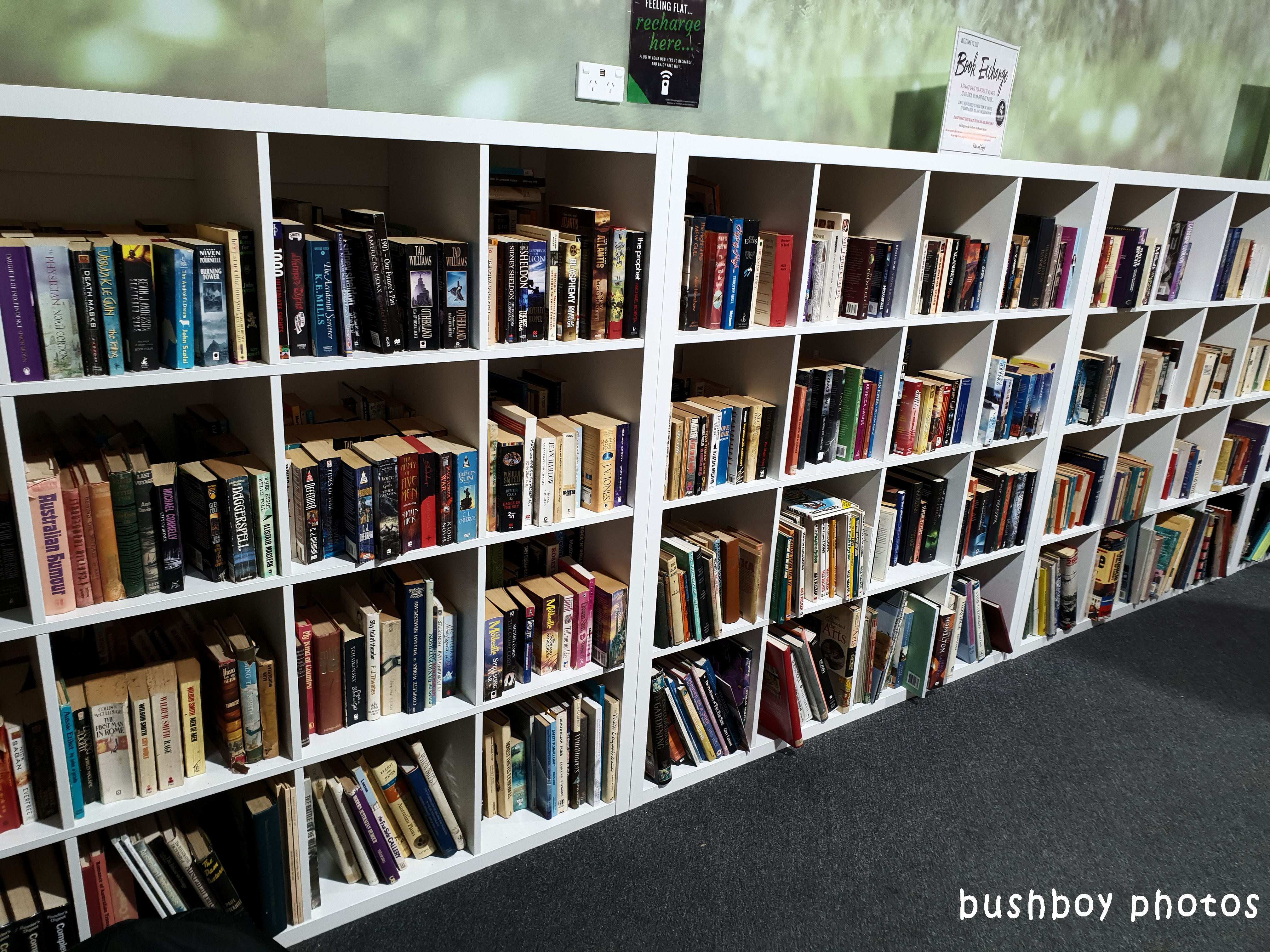 180523_blog challenge_books or paper_bookshelves_grafton