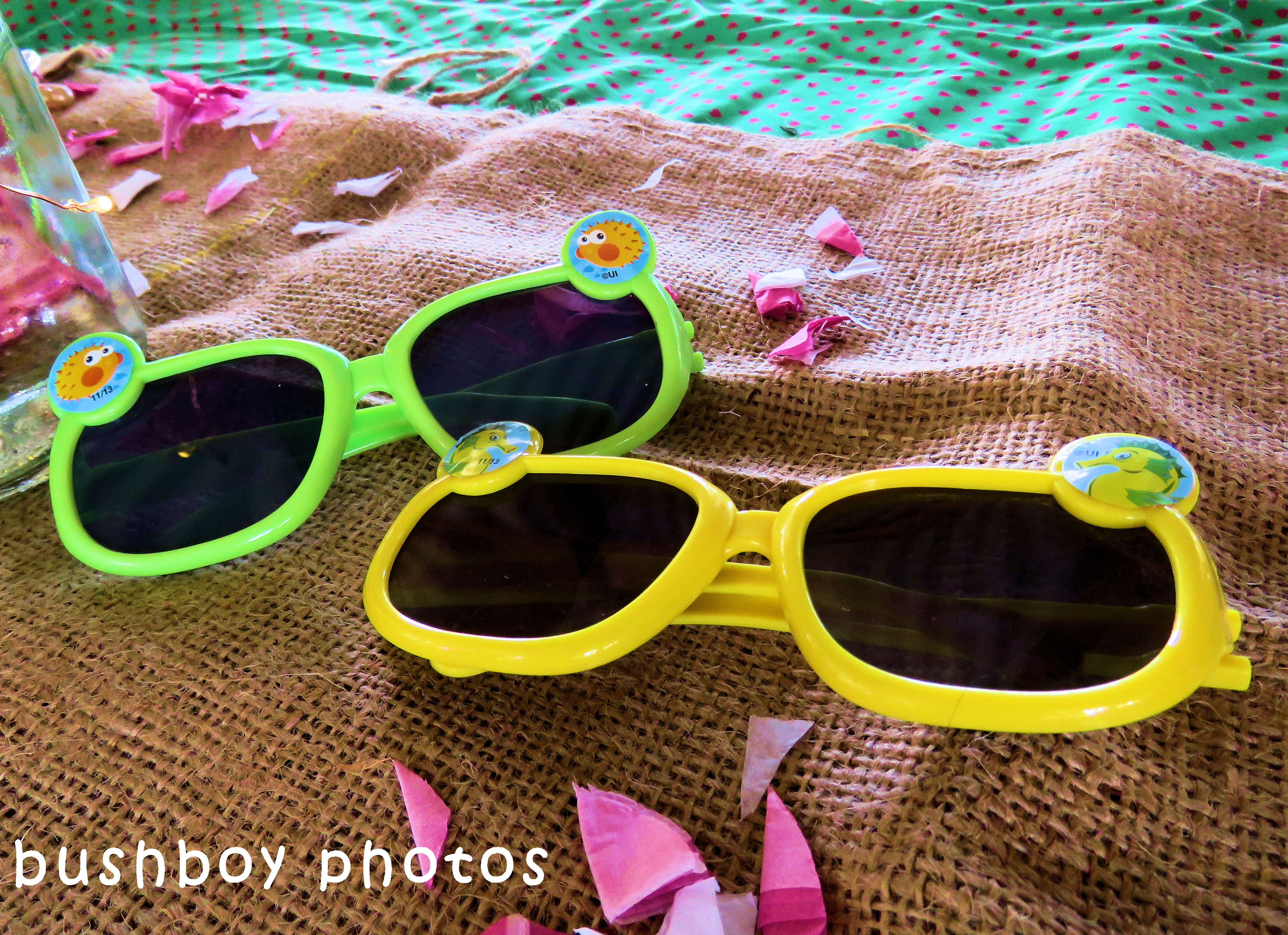 180530_odd ball_sunglasses