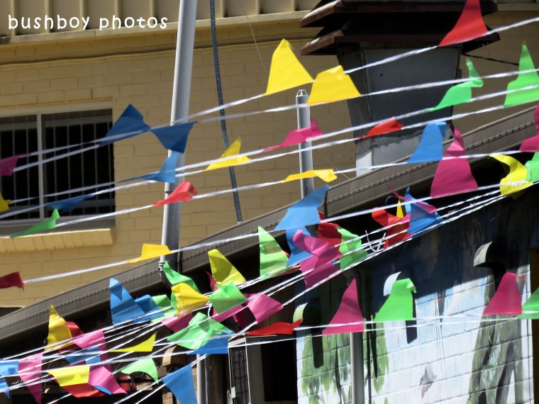 180531_blog challenge_flags_banners_bunting1_lismore