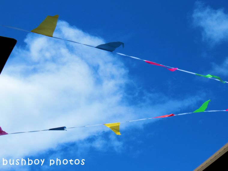 180531_blog challenge_flags_banners_bunting2_lismore