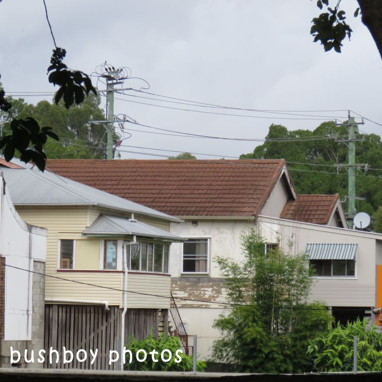 180607_square rooves_houses_lismore