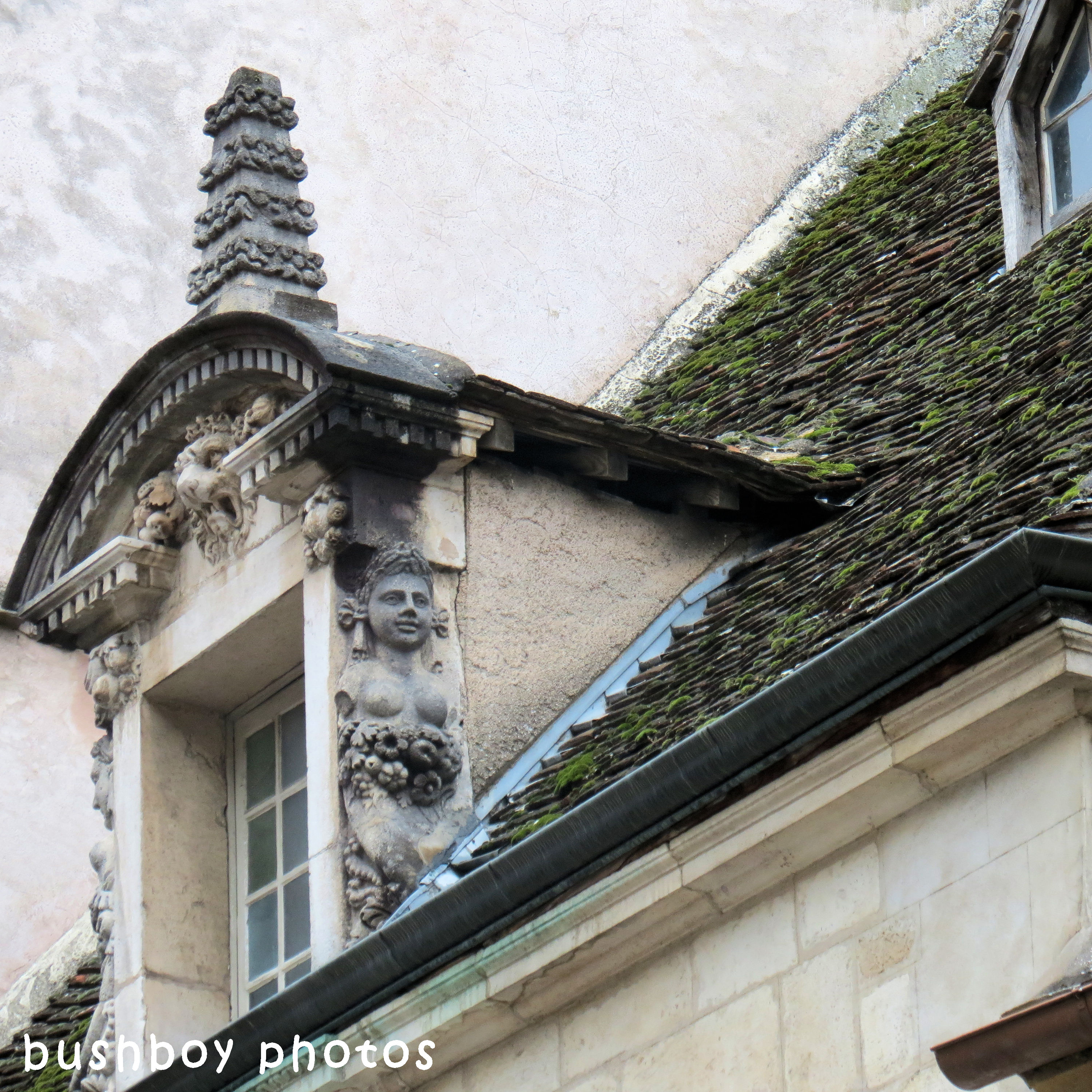 180614_square rooves_mossy roof_whole_beaune_france