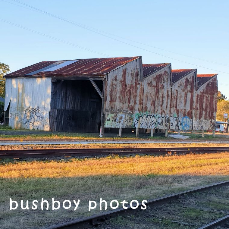 180622_square rooves_shed_lismore