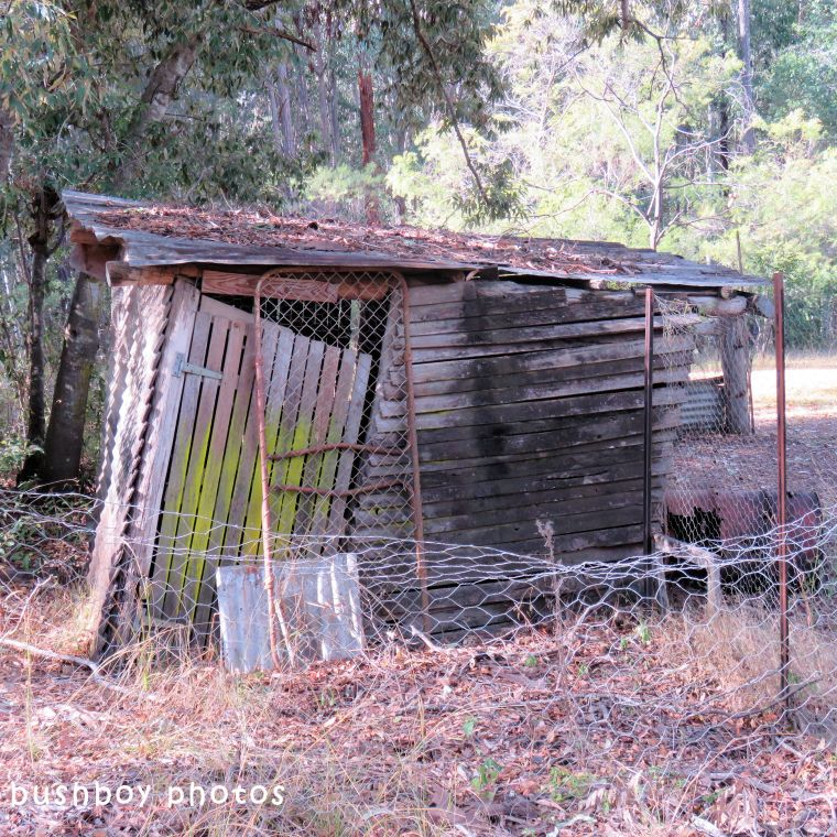 180630_square rooves_my place_chook shed