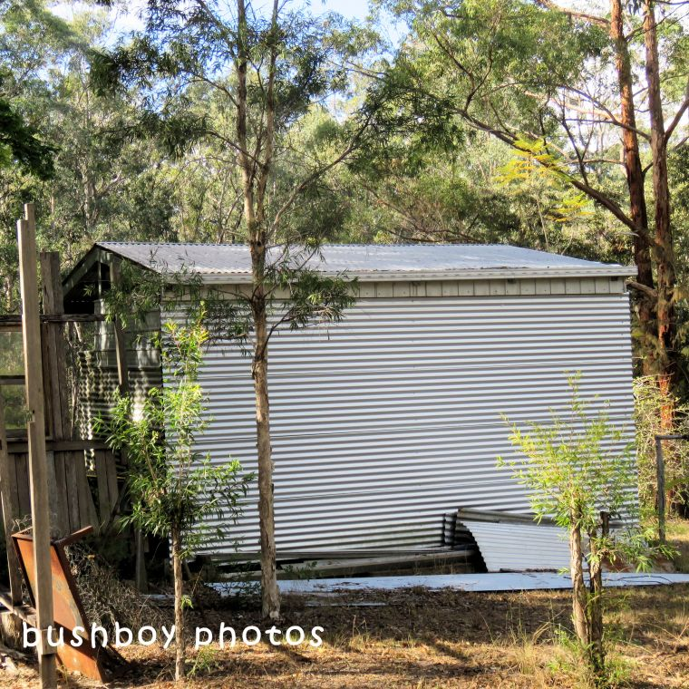 180630_square rooves_my place_tin shed