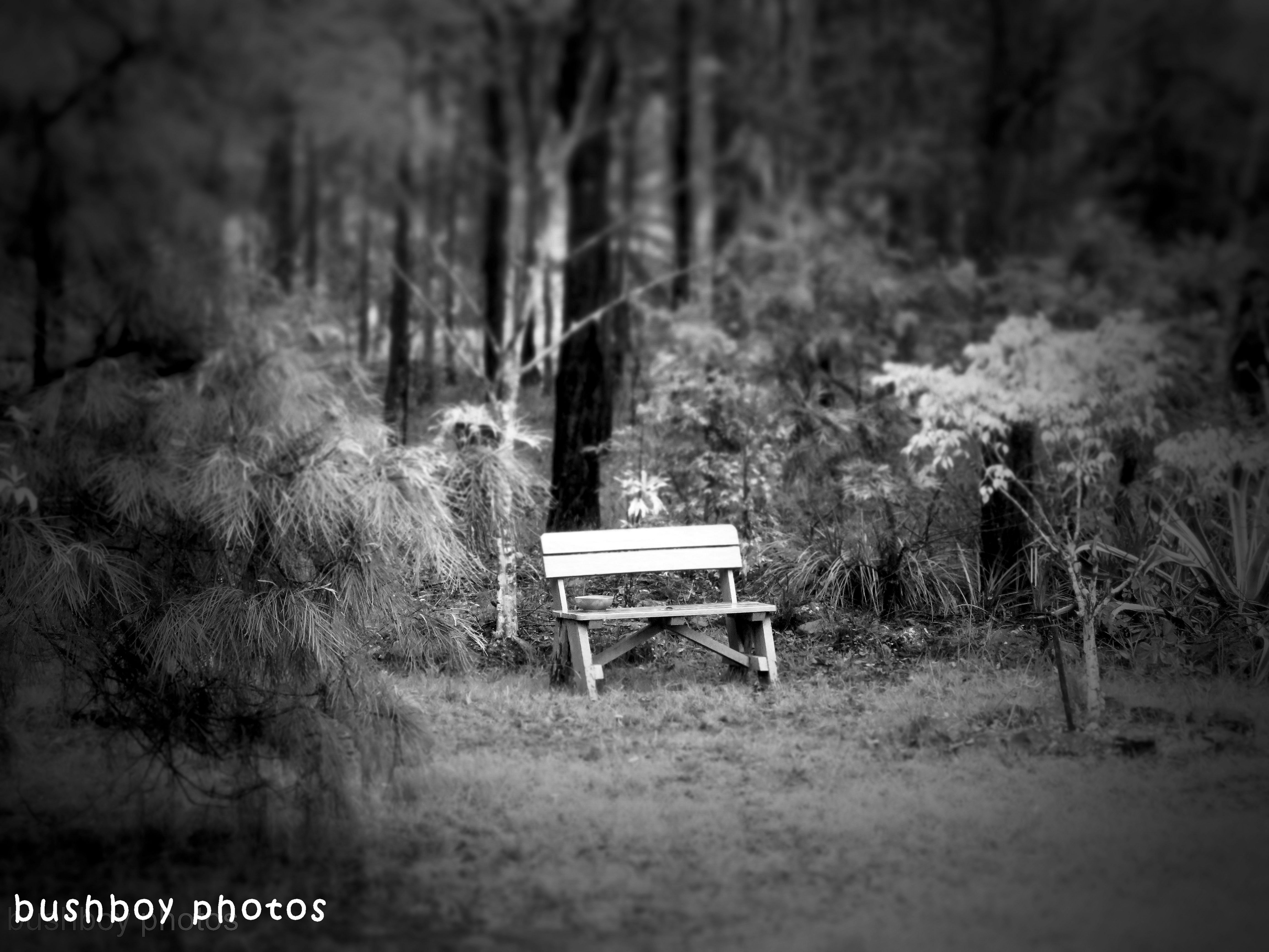 180727_blog challenge_black and white_benches