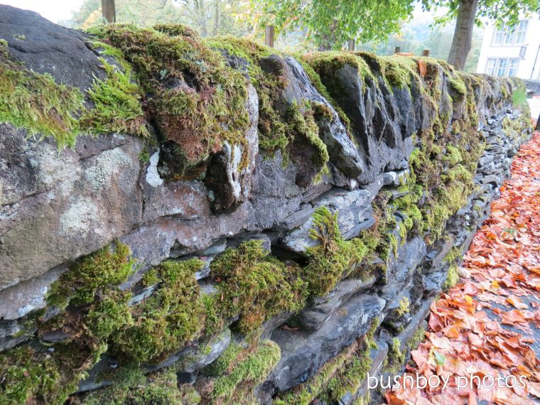180820_blog challenge_over 100 years old_luss_scotland_stone wall