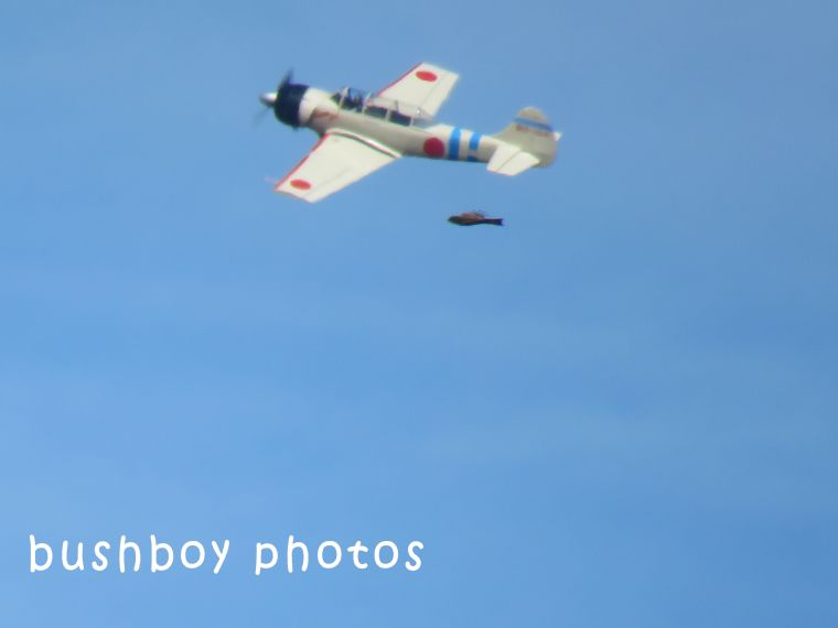 plane_bird_lismore air show_named_july 2018