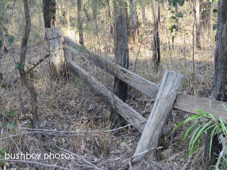 180911_blog challenge_fences_timber rails