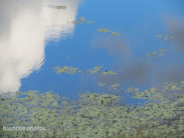 180914_blog challenge_water_dam_murwillumbah