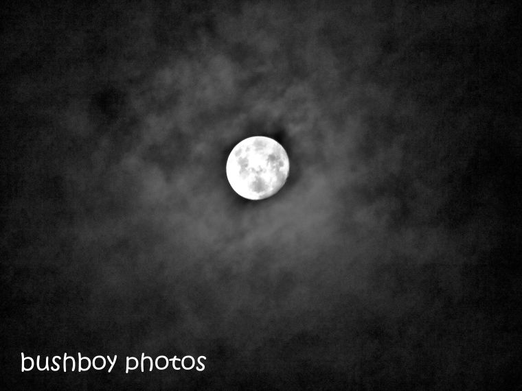 180928_blog challenge_blackandwhite_circles_curves_moon