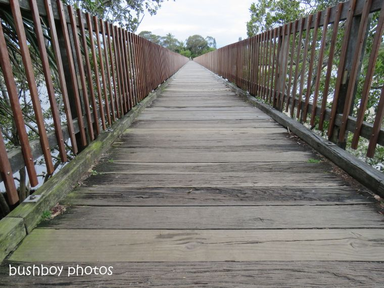 180928_blog challenge_path_which way_wooden walkway_brunswick heads