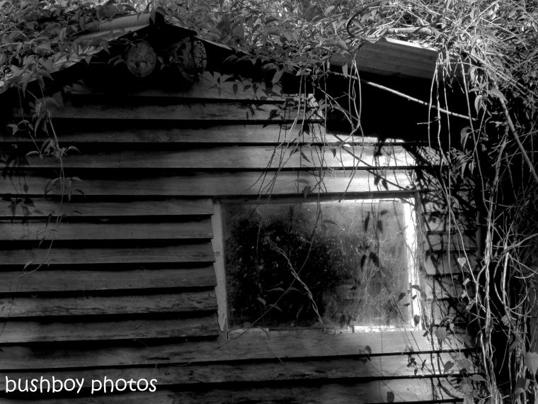 181010_blog challenge_black and white_shed