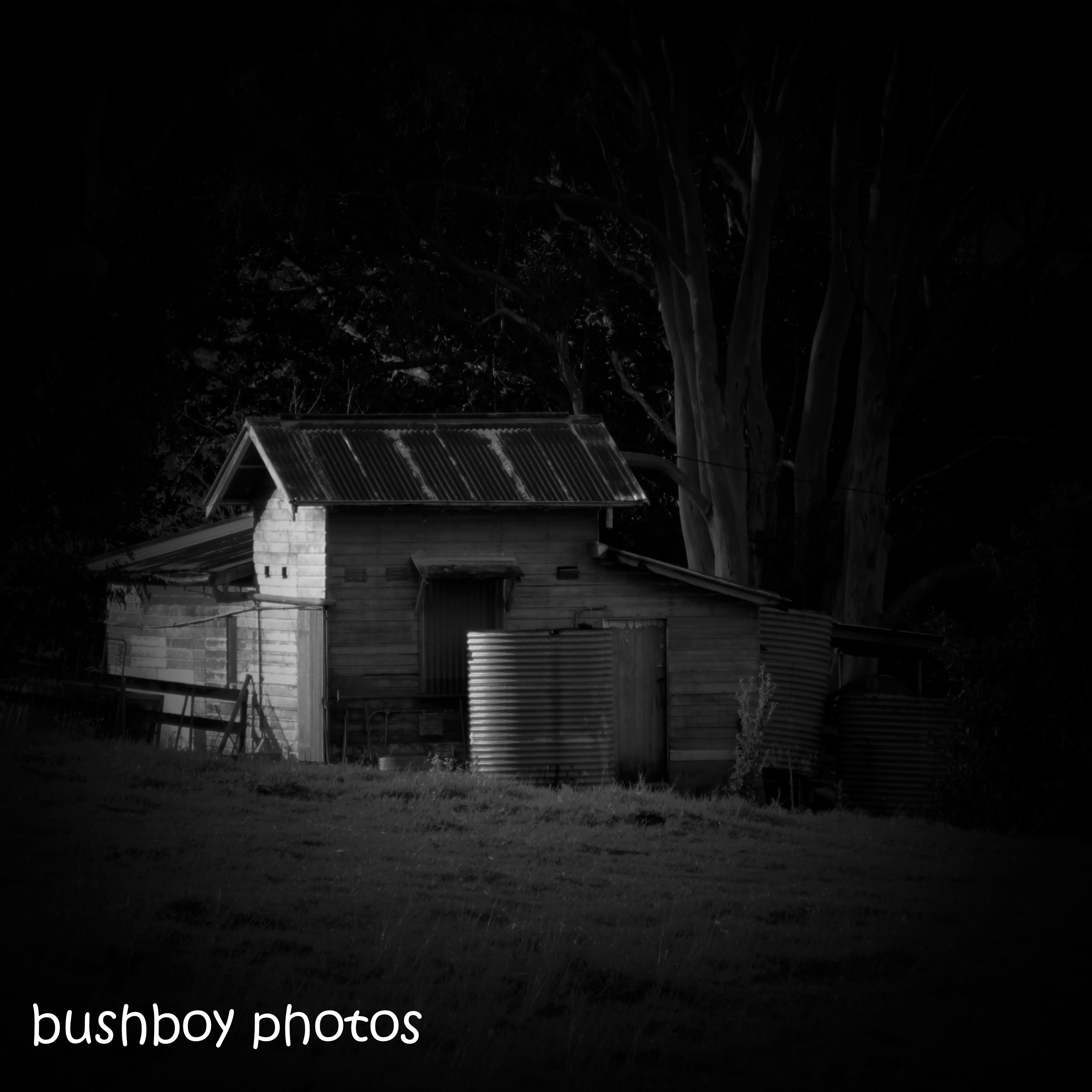 181011_blog challenge_haunting_old_shed_blackandwhite