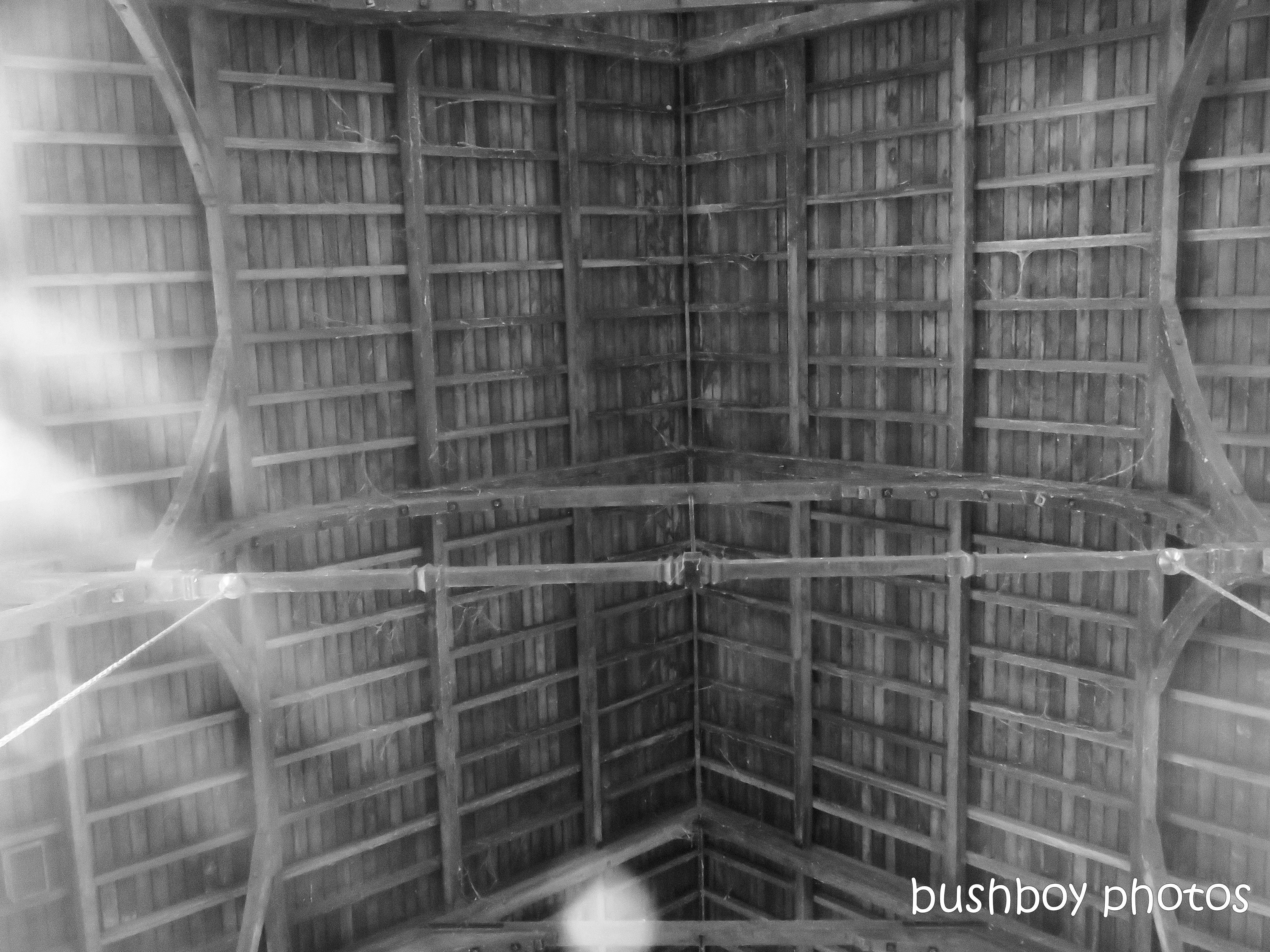 181016_blog challenge_things in a row_grafton_cathedral_ceiling