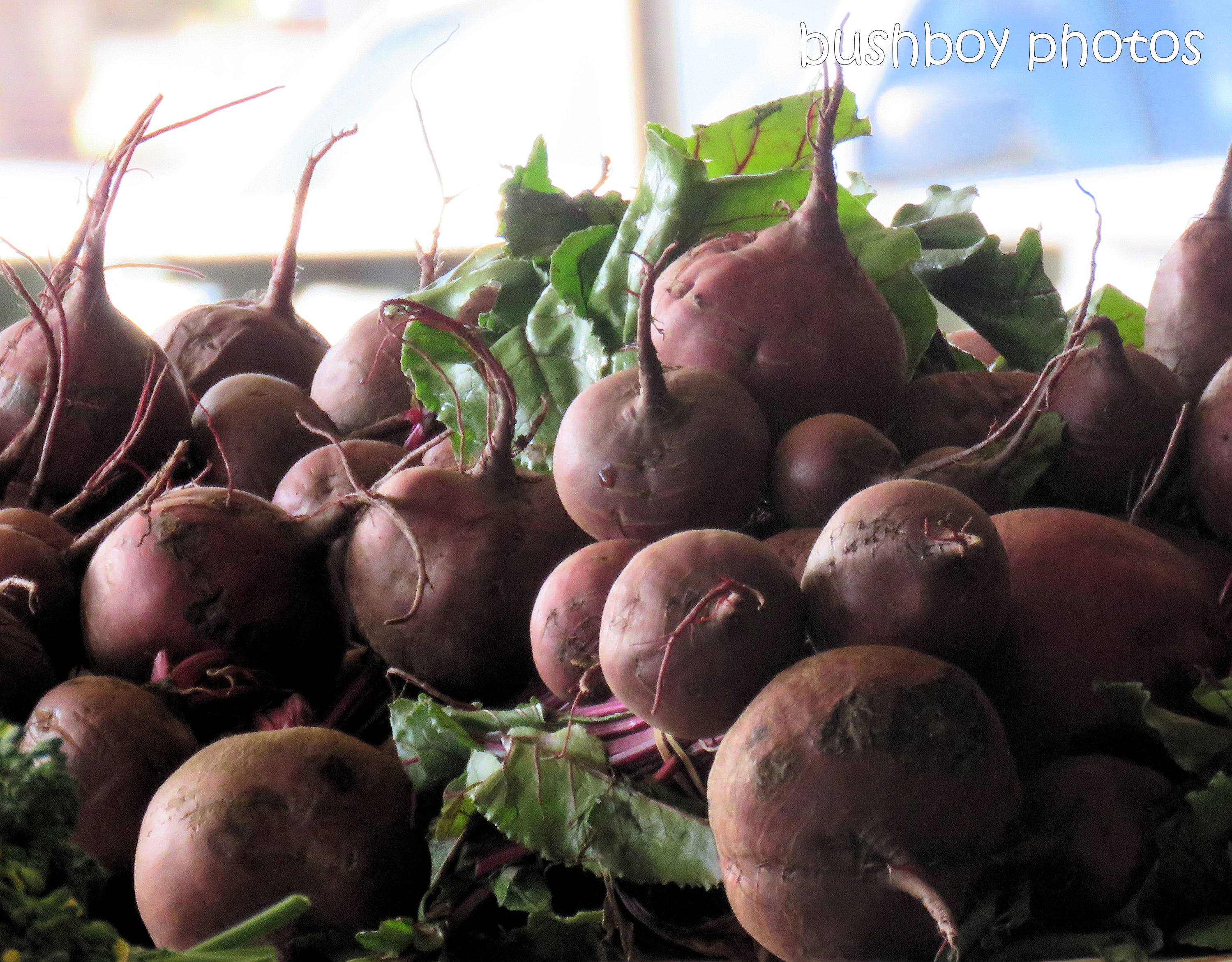 beetroot_lismore_market_named_sept 2018