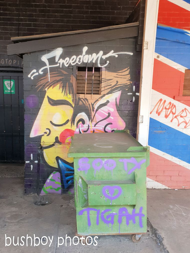 181106_blog challenge_street_art_lismore2