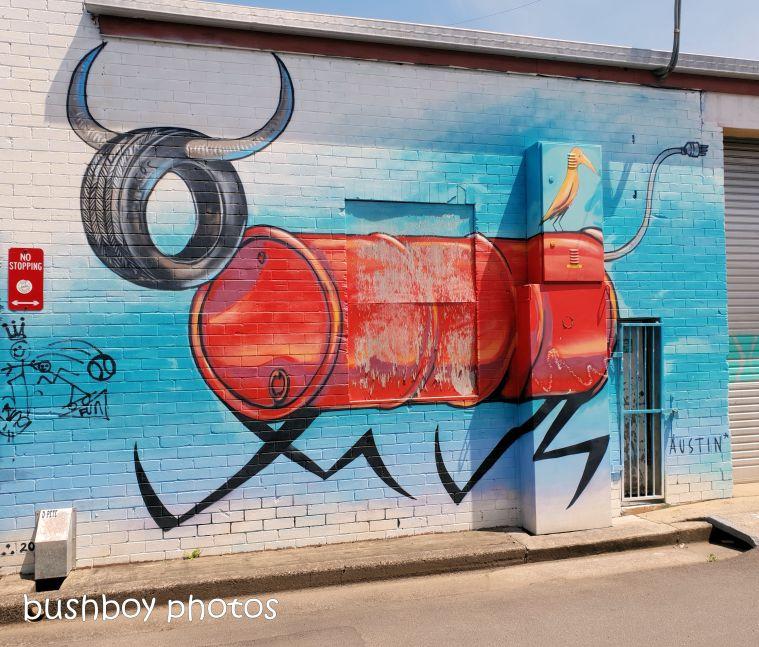 181106_blog challenge_street_art_lismore3