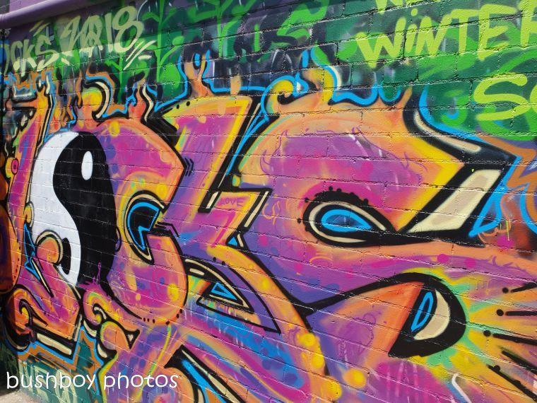 181106_blog challenge_street_art_lismore4
