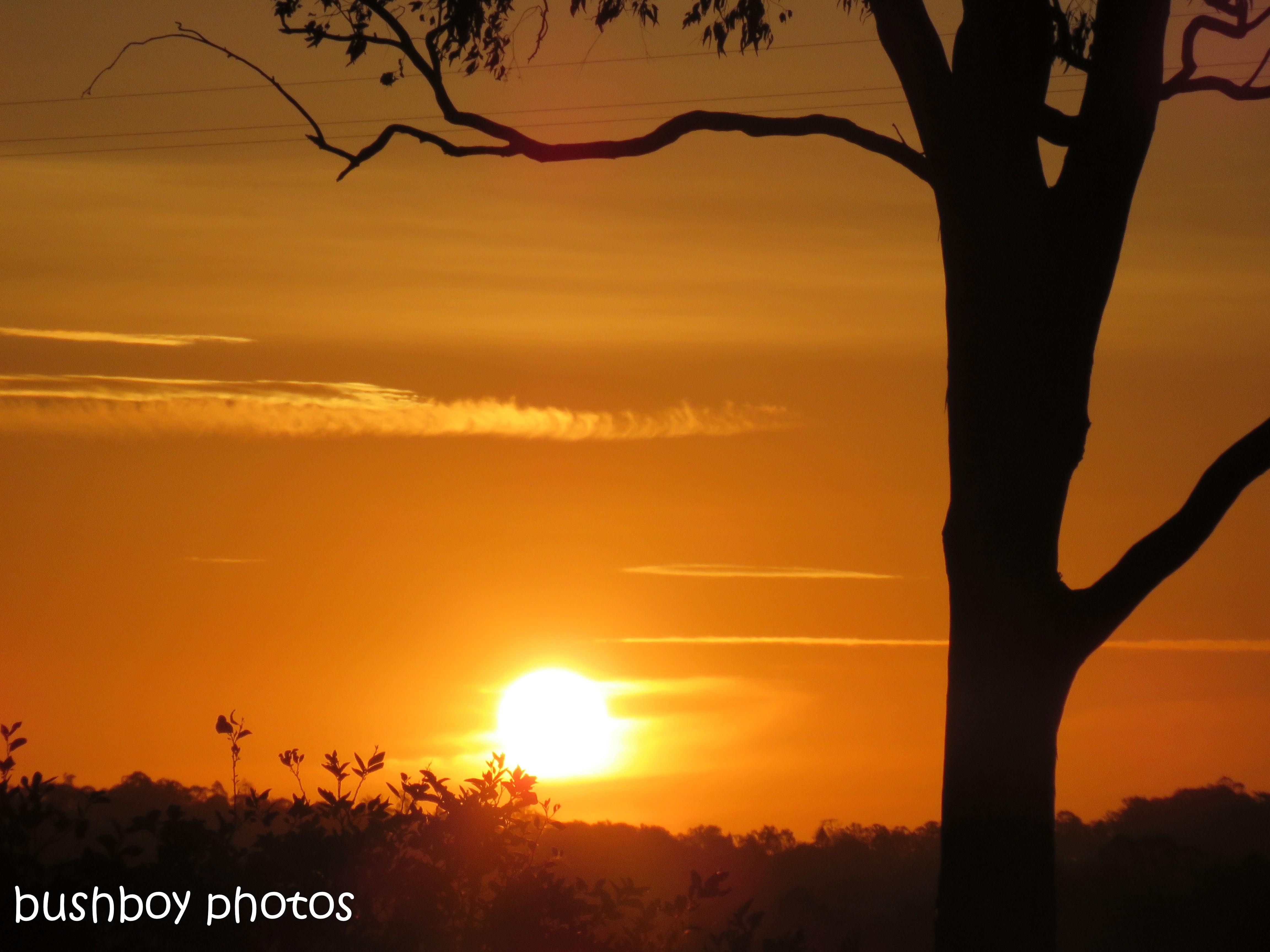 181111_blog challenge_light_sunset_caniaba