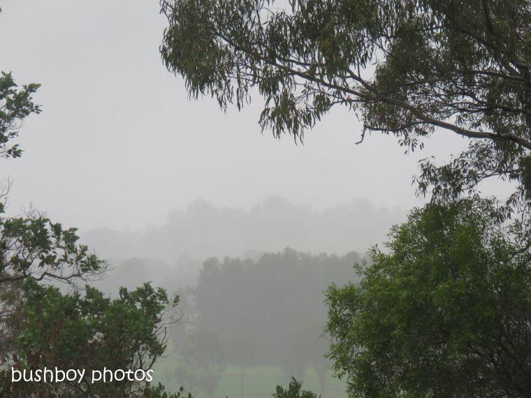 rainy_morning_named_caniaba_oct 2018