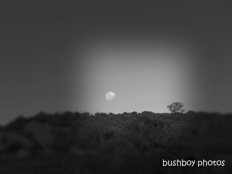 190127_blog_challenge_blackandwhite_in_the_distance_moon