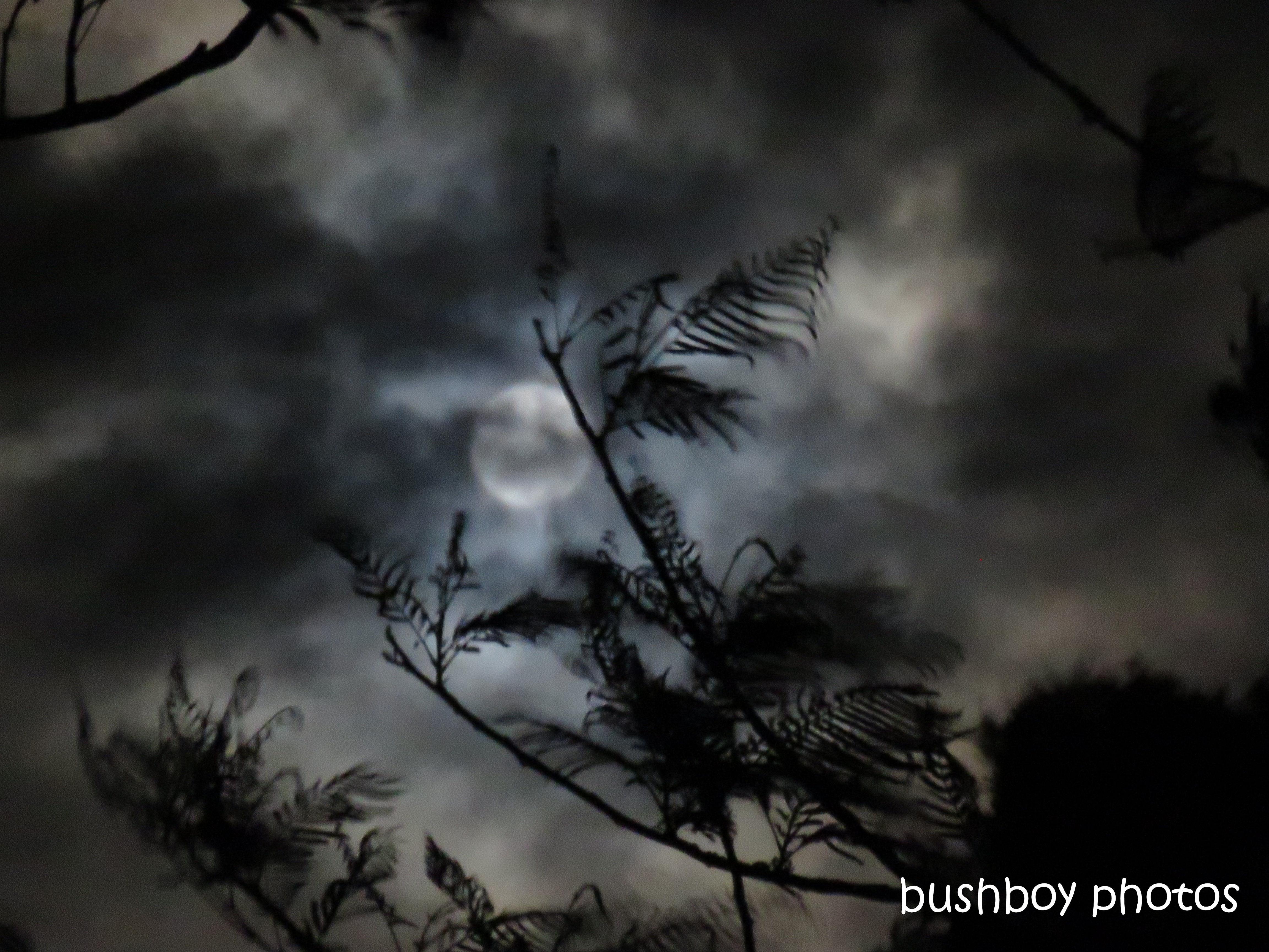 190212_blog_challenge_shadows_moon