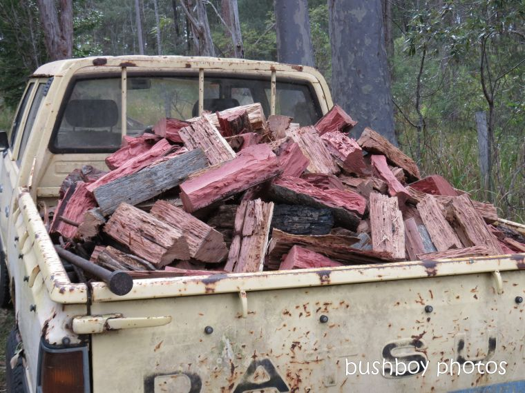 190219_blog_challenge_winter_firewood_ute