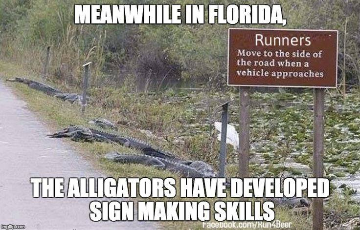 sign_aligators