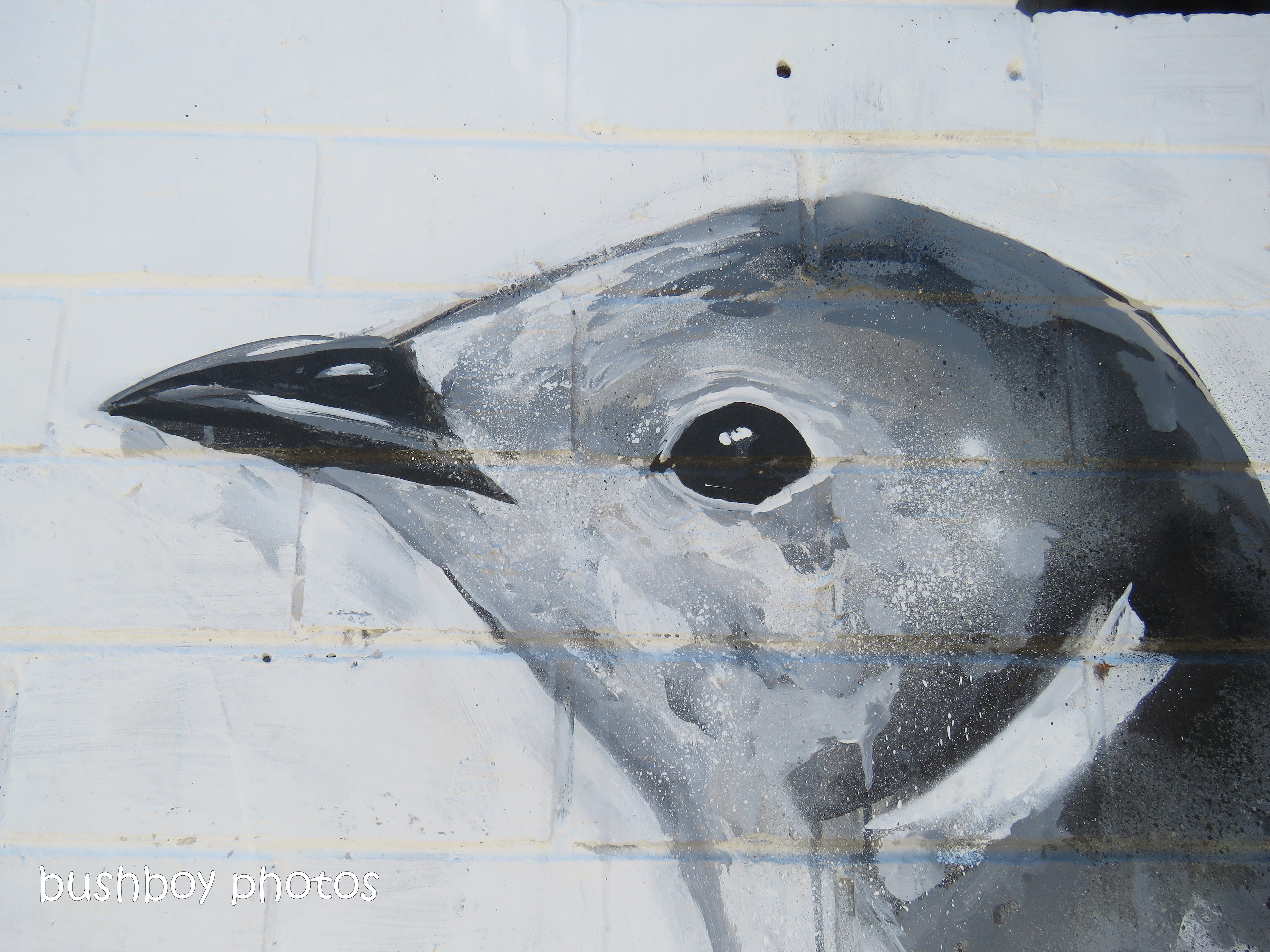 190308_blog_challenge_blackandwhite_murals_toowoomba5