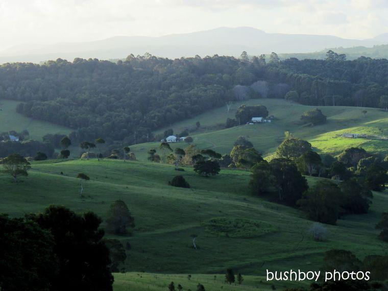 190311_blog_challenge_landscape_binna burra