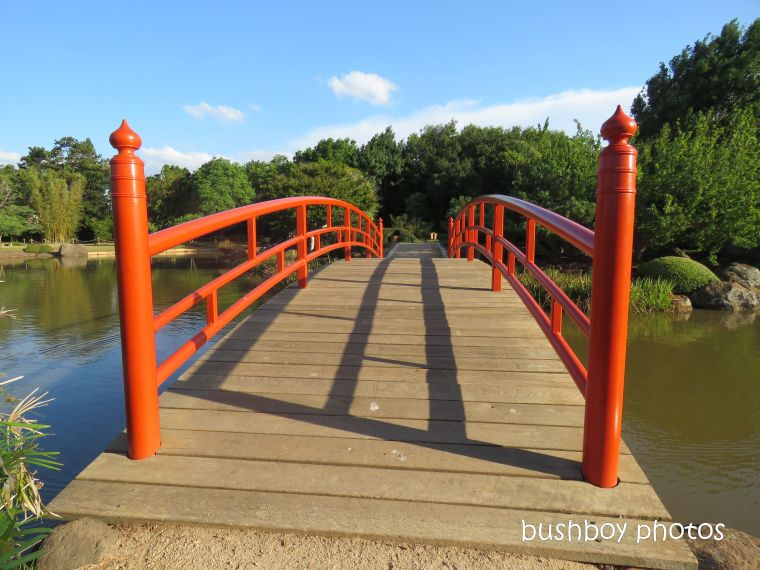 190314_blog_challenge_which_way_toowoomba_japanese_garden_bridge