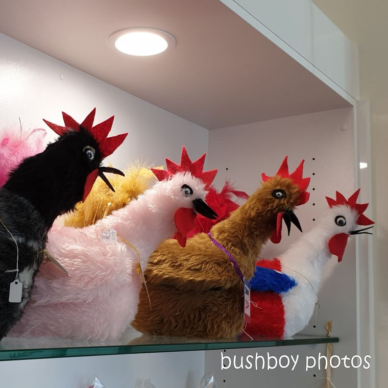 190314_spiky_square_shop_chooks1