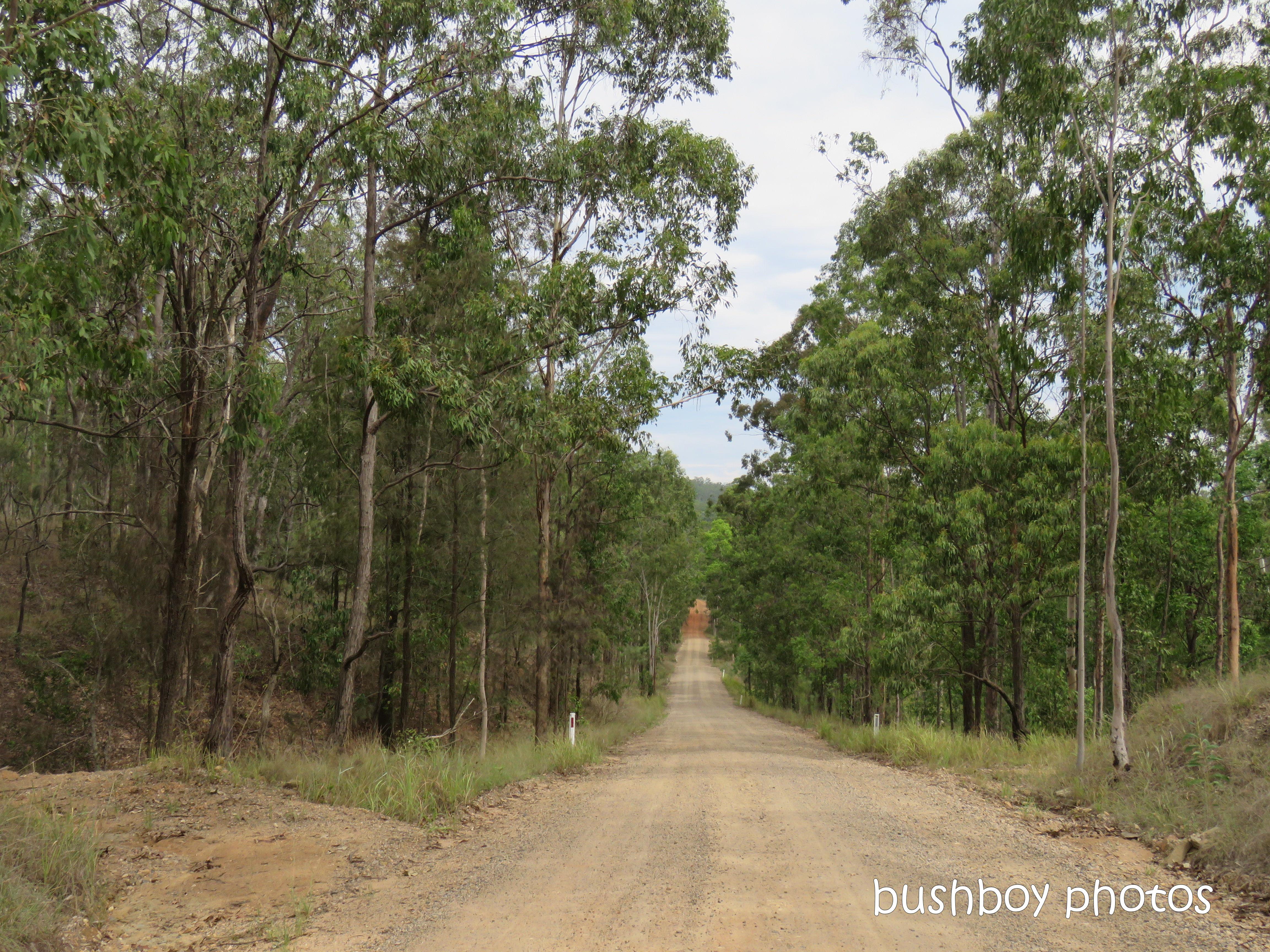190326_blog_challenge_roads_lilydale_home3