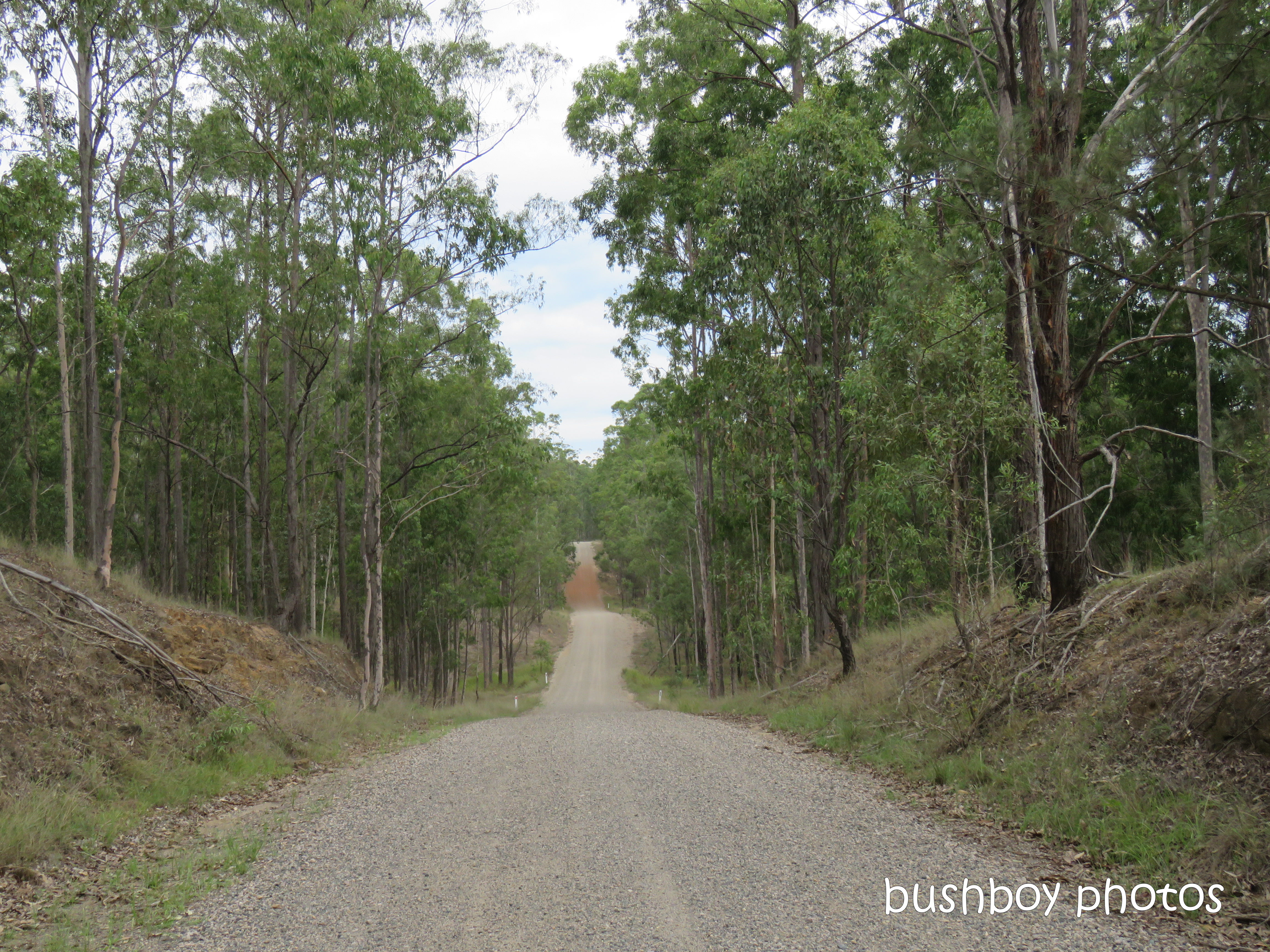 190326_blog_challenge_roads_lilydale_home4