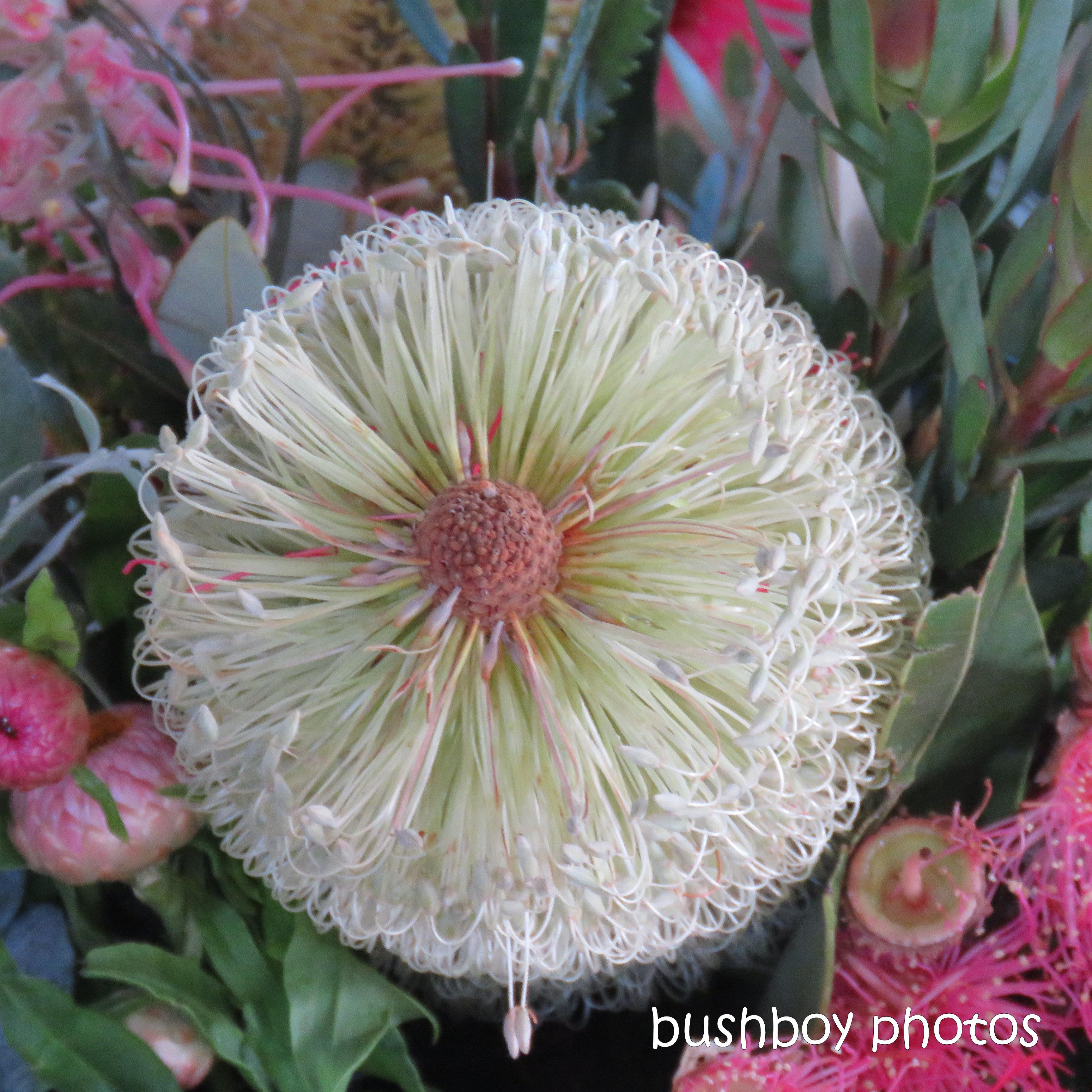 190326_blog_challenge_round_things_flower
