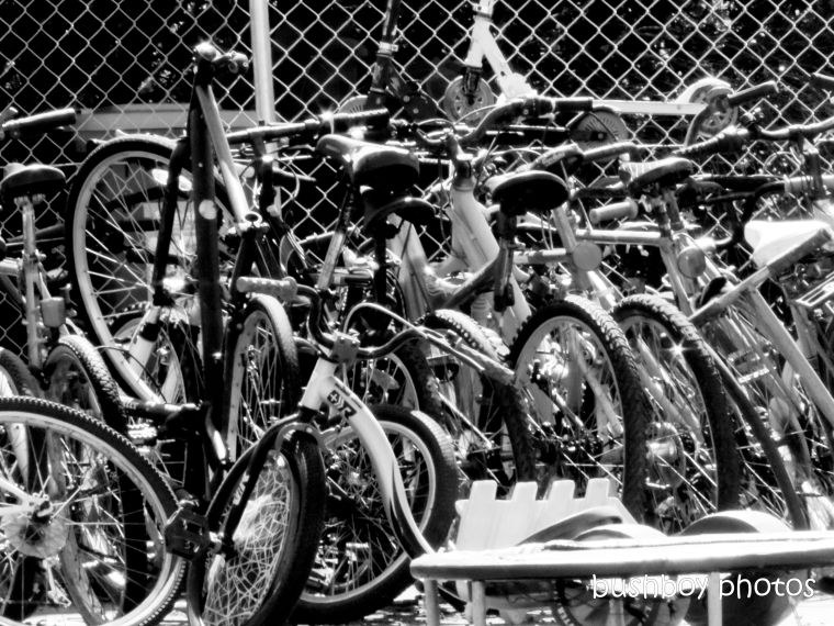 190329_blog_challenge_blackandwhite_wheels_bike_bikes_tip