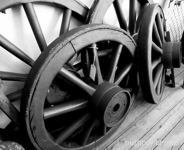 190329_blog_challenge_blackandwhite_wheels_bike_wagon_mullumbimby