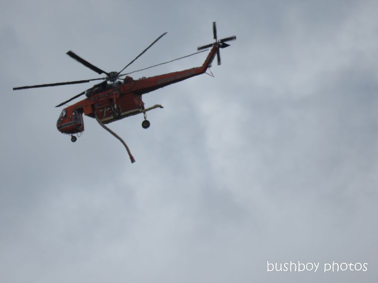 helicopter_fire_crane_caniaba_feb 2019