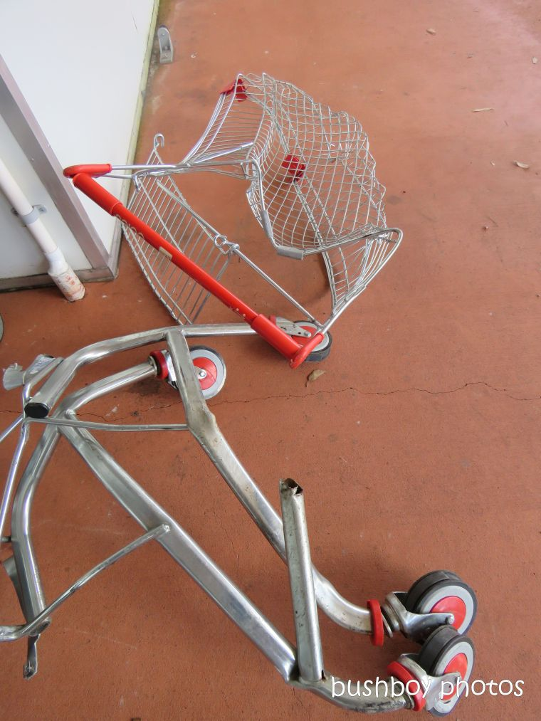 shopping_cart_smashed_lismore_feb 2019