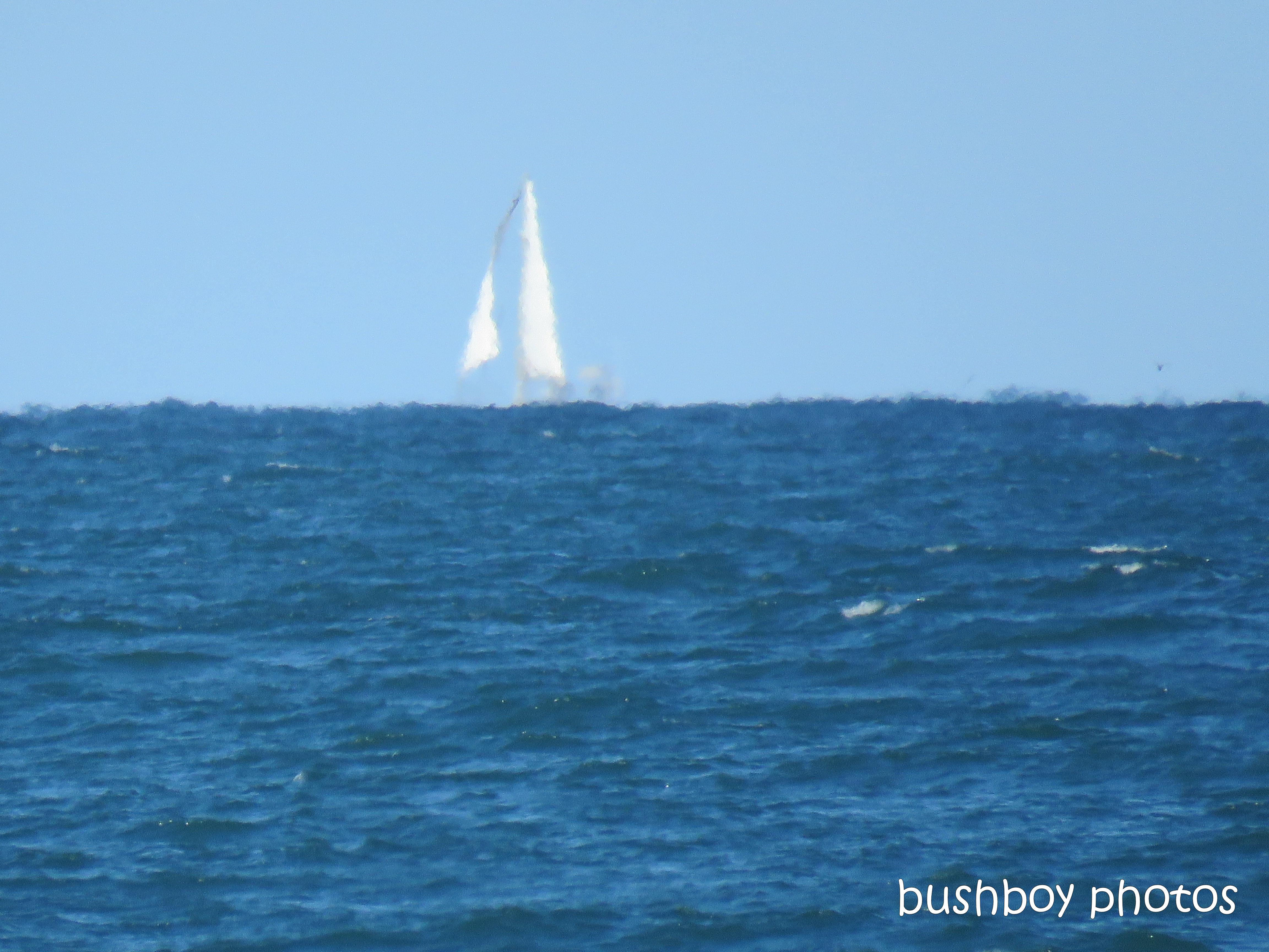 190407_blog_challenge_silent_sunday_yacht