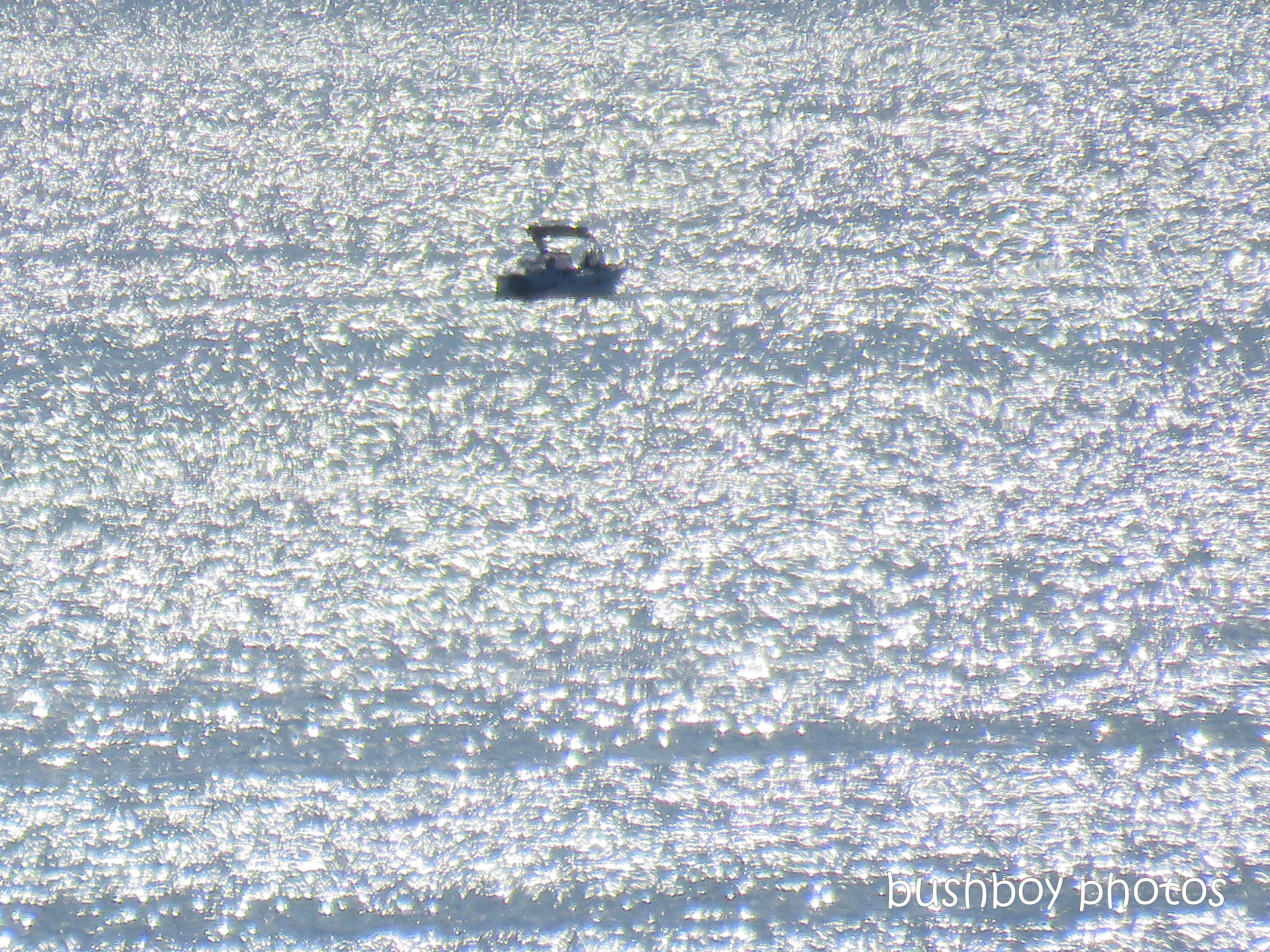 190410_blog_challenge_dazzle_boat_water_port_stephens